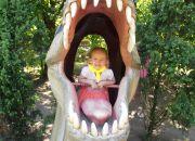 Dolina  Dinozaurów