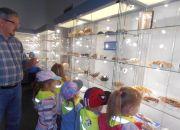 Muzeum przyrody_1