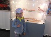 Muzeum przyrody_6