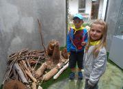 Muzeum przyrody_7