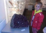 Muzeum przyrody_8